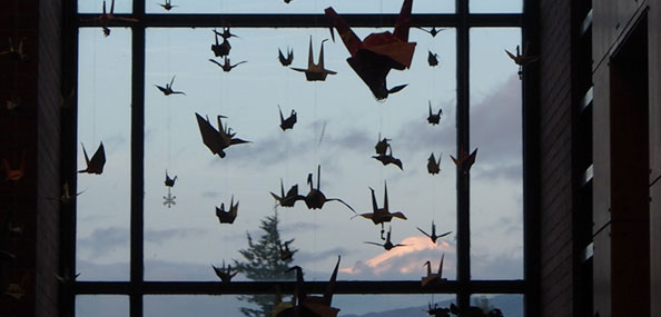 Paper cranes in library